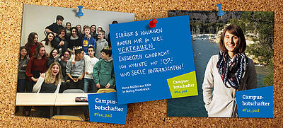 Pinnwand mit Fotos von Studierenden