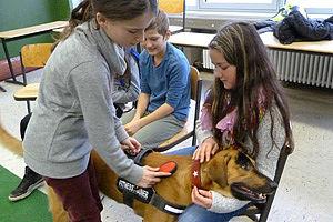 Hund und Schulkinder