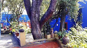 Gartenansicht des Museums Frida Kahlo
