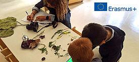 Im Kindergarten untersuchen Kinder mit Tablet gesammelte Pflanzen